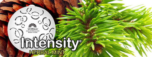 INTENSITY HERBAL MINT